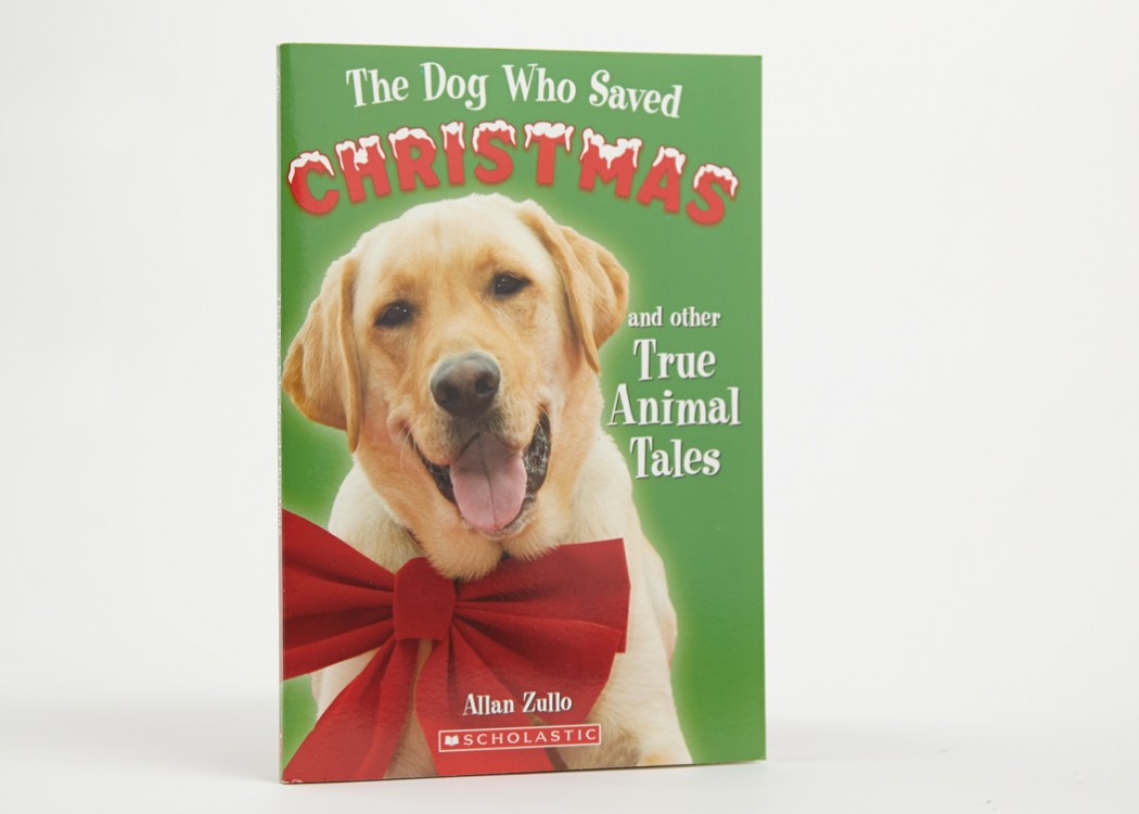 The Dog Who Saved Christmas and Other True Animal Tales | Allan Zullo